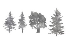 Four Kinds of Tree DXF File