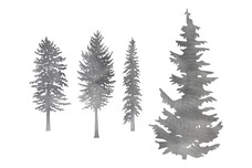 Four Pine Trees DXF File
