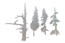 Tree Tops DXF File