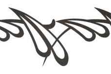 Abstract Petal Design DXF File