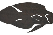 Tropical Fish Side View DXF File