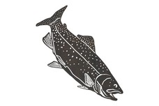 Swimming Down Trout DXF File