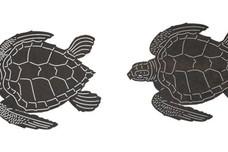 Turtles DXF File