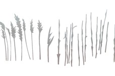 Tall Grass DXF File