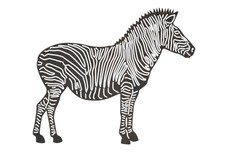 Zebra Side-View DXF File