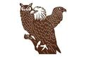 Eagle, Hawk, Owl Wall Art