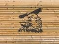 Eagles Wall Art