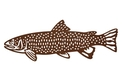 Trout_Fish DXF File