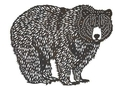 Bear Wall Art