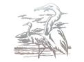 Cranes Wall Art