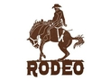 Rodeo Wall Art