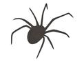 Spider Top-Profile DXF File