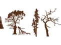 Treetops Types DXF File